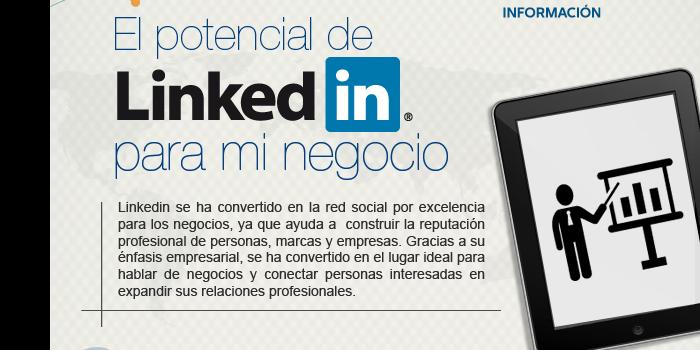 El potencial de LinkedIn para mi negocio