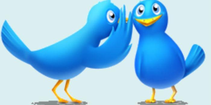 Potencia tu marca: ¿cómo llamar la atención de influencers en Twitter?